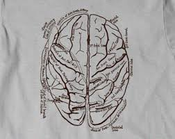 Human Anatomy T Shirts Anatomical Brain Shirt T Shirt T Shirt Tee Men Women Ladies