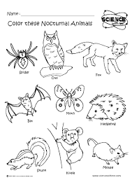 skunk coloring pages time coloring pages
