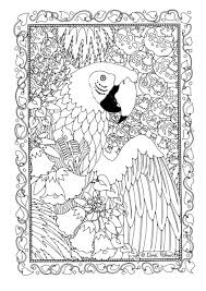 coloring parrot img 19582