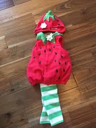 Strawberry Baby Halloween Costume Strawberry Halloween Costume Baby U0026 Kids Menlo Park Ca Offerup
