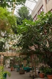 jardin interieur design design jardin interieur montreal orleans 32 jardin japonais