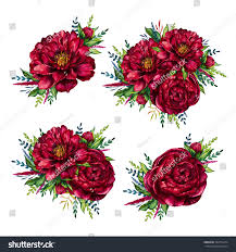 Peonies Bouquet Set Watercolor Red Peonies Bouquets Watercolour Stock Illustration