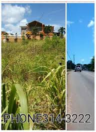 1 2 acre lots for sale in st elizabeth junction jamaica land
