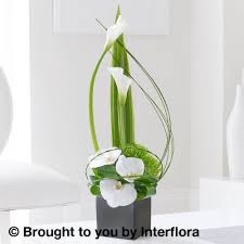 Calla Lily Flower Delivery - cool calla lily and orchid swirl arrangement booker flowers and