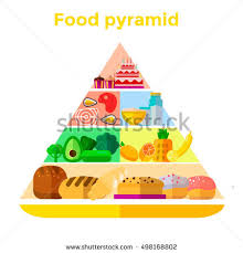 food pyramid vector stock images royalty free images u0026 vectors