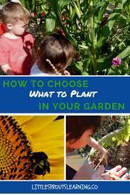 42 best starting a garden images on pinterest gardening veggie