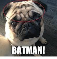 Batman Memes - batman batman meme on me me
