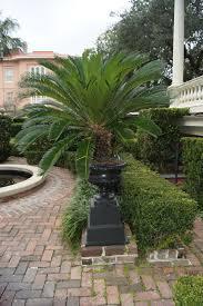 charleston u0027s gardens u2013 garden soiree