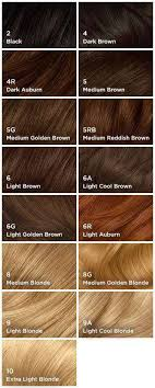 clairol professional flare hair color chart clairol professional blonde color chart amazon com clairol