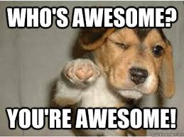 You Are Awesome Meme - image result for you awesome meme junk drawer pinterest
