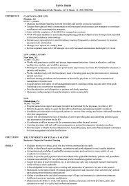 lpn resume exle lpn resume sles velvet