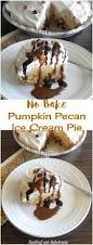 quick and easy thanksgiving recipes 421 best i turkey day images on pinterest