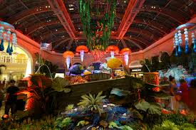 floral exhibitions celebrate summer at palazzo u0026 bellagio