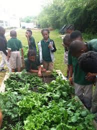 Ideas For School Gardens Curriculum School Garden Resources