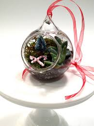 174 best terrarium images on pinterest gardening succulents and