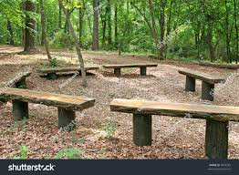 Old Park Benches Ring Old Wood Timber Benches Forest Stock Photo 3994285 Shutterstock
