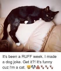 Dog Jokes Meme - it s been a ruff week i made a dog joke get it it s funny cuz i