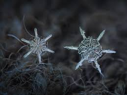 how a snowflake gets its shape popular science