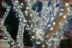 christmas lights tree wrap outdoor christmas light tree luxury how to wrap trees with outdoor