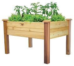 unbranded elevated 2ft x 4ft cedar wood raised garden bed