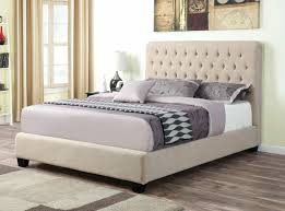 Queen Bed Frame With Trundle by Coaster Daybed With Trundle U2013 Heartland Aviation Com