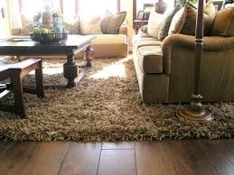 Carpeting Ideas For Living Room by Best 25 Brown Shag Rug Ideas On Pinterest Blue Couches