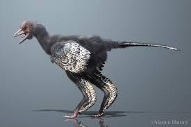new bird like dinosaur settles origins of flight d brief