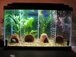unique fish tank decorations cool diy aquarium decor ideas