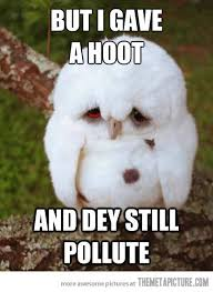 White Owl Meme - funny sad owl meme white on imgfave
