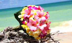 wedding flowers oahu yellow and pink frangipani bouquet bouquet wedding flower