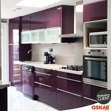 cuisine couleur aubergine ultra moderne et colorée kitchens