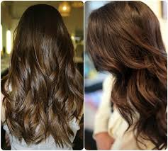 new haircolor trends 2015 hair color trend 2015 hair style and color for woman