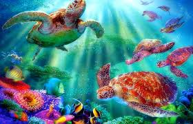 oceans paradise fishes pre nature beautiful animals colors