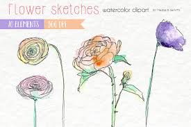 watercolor clip art flowers floral sketches sketch rose