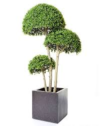 19 best artificial plants and trees images on
