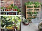 Diy Garden Decor Ideas With Ornamental Plants | Stogielife