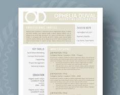 cv format professional modern resume template professional resume cv template instant