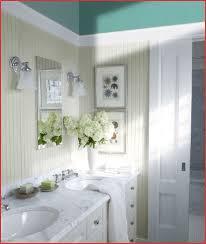 bathroom paint ideas benjamin best bathroom paint colors benjamin luxury adorable 50