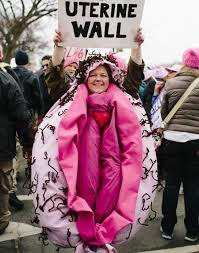 pink costumes part costumes ruled the women s march