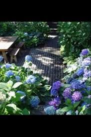 Backyard Garden Ideas Photos 35 Best Before U0026 After Garden Makeovers Images On Pinterest