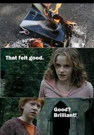 Hermione Memes - hermione books