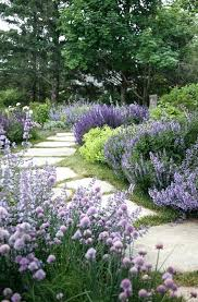 Garden Path Edging Ideas Garden Path Designs Top Cheap Garden Path Designs How To Garden