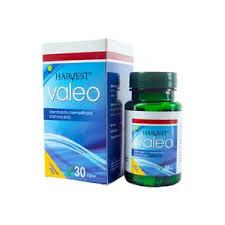 jual obat suplemen vitalitas pria perkasa dewasa herbal tahan lama
