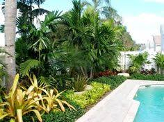 Tropical Landscaping Ideas by Tropical Landscape Design Ideas Pictures Remodel And Decor