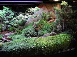 robert u0027s truly magical indoor miniature water gardens the mini