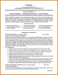 Resume Job Summary by 980938405729 What Should A Resume Look Like Pdf Example Of A