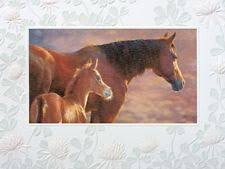 pumpernickel cards pumpernickel press greeting cards and invitations ebay