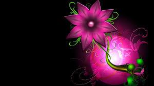 Design Com Flowers Abstract Design Desktop Background Wallpaper 1080p Hd