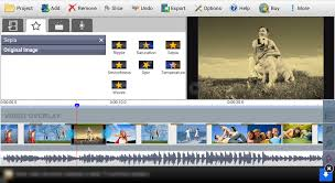 videopad video editor free 4 43 apk download android cats