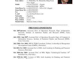 Mis Sample Resume by Well Suited Resume Sample Doc 11 Download Cv Resume Ideas